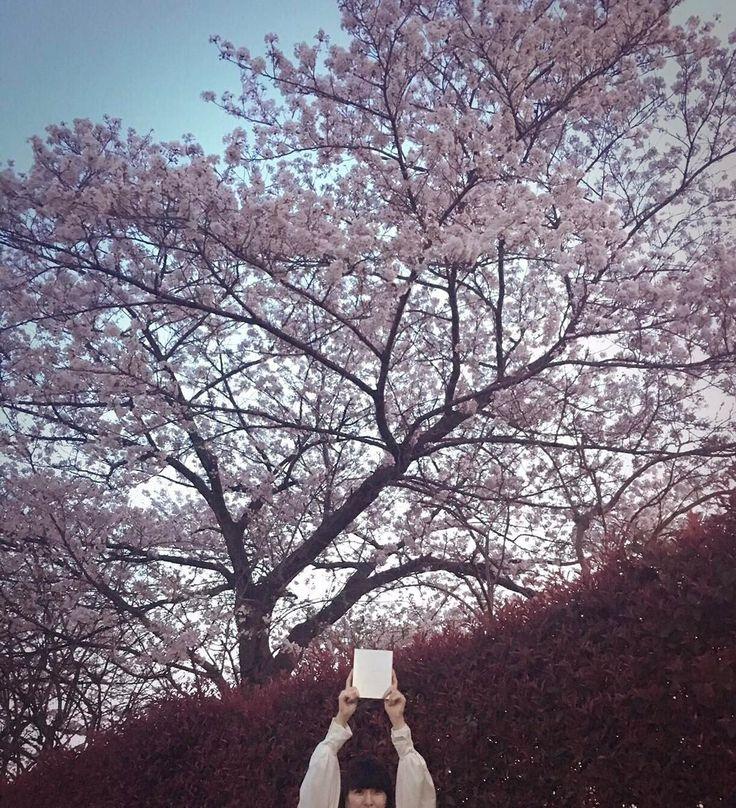 いいね!15.1千件、コメント69件 ― Perfume Officialさん(@prfm_official)のInstagramアカウント: 「LIVE COSMIC EXPLORER Blu-ray & DVD was released this week in Japan! Limited edition has over 6.5…」