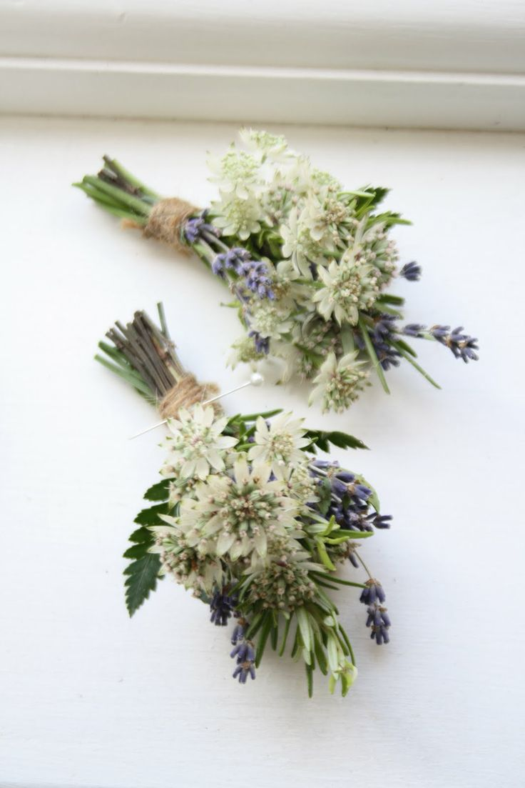 The Blossom Tree: Buttonholes