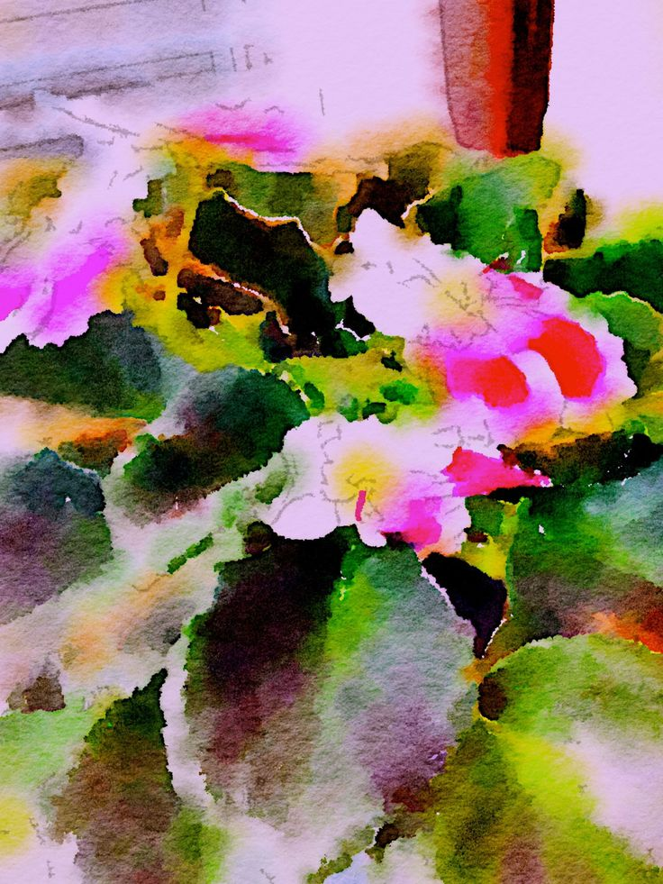 AFRICAN VIOLET by CRussellPhotography on Etsy