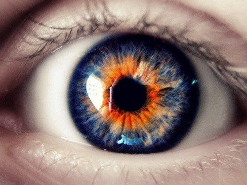 His eyes were the strangest she had ever seen. A deep, vibrant blue at the edges,  blending into a vivid orange.