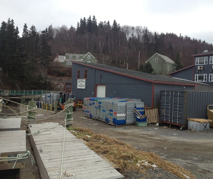 Hall's Harbour is a small fishing village on the Bay of Fundy.. great to walk at low tide!