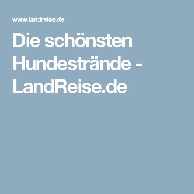 Die schönsten Hundestrände - LandReise.de