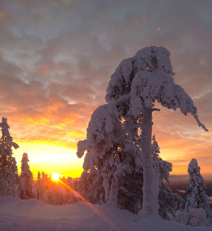 Sunset in Levitunturi. Finland