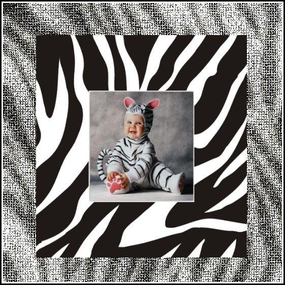 My Zebra Baby.