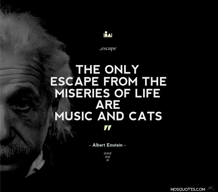 Funny Quotes Einstein: Albert Einstein Inspirational Funny Quotes The Only Escape
