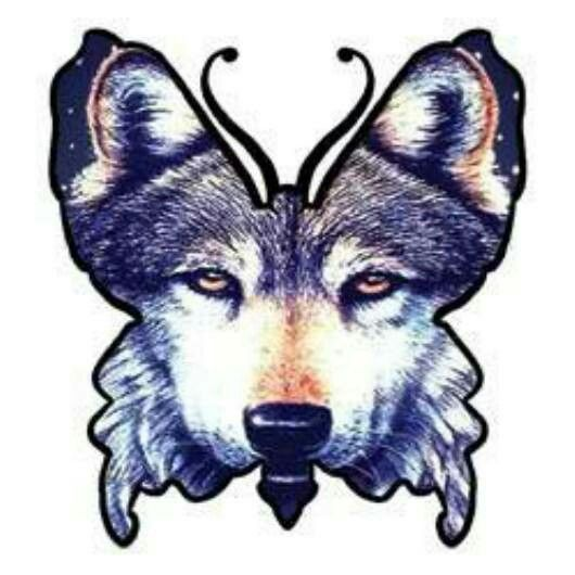 Lupus wolf & butterfly