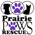 Prairie Paws Rescue: Jamestown, ND--If you love animals or are considering a career in the veterinary sciences, get involved with Prairie Paws Rescue. Volunteer opportunities could include playing with and walking the animals, grooming, or providing a foster home for a homeless pet. Call them now to see how you can help!