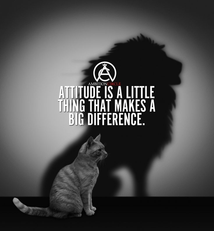 "5,502 Likes, 17 Comments - Entrepreneur Motivation (@ambitioncircle) on Instagram: ""Having a good attitude will take you far in life! - DOUBLE TAP IF YOU AGREE!"""