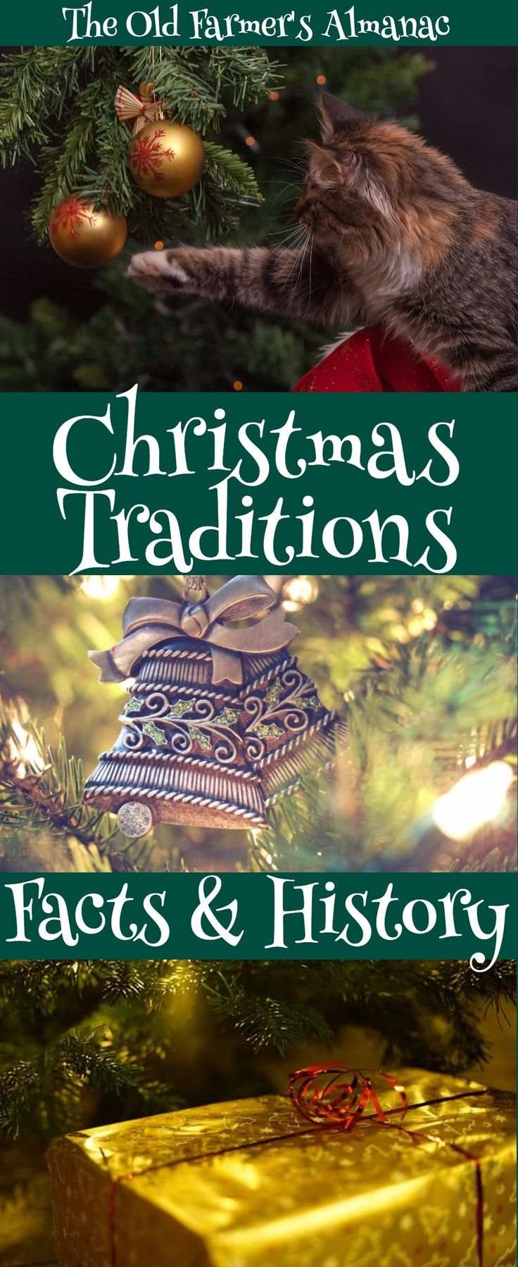 History Behind The Christmas Tree Part - 46: Christmas Traditions: Origins And Facts