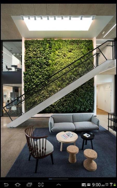 Pared verde en interiores