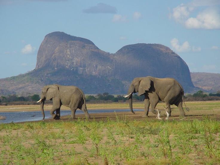 Lugenda Wilderness Camp, Niassa Reserve, Mozambique