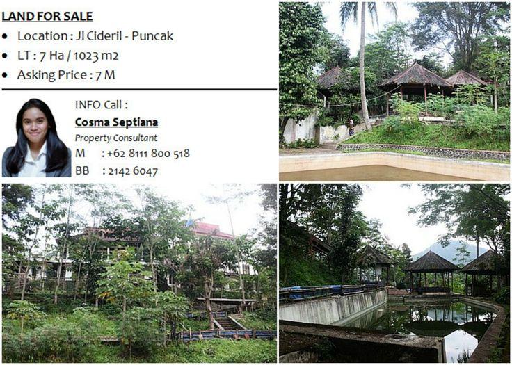 LAND FOR SALE - Location : Jl Cideril - Puncak - LT : 7 Ha / 1023 m2 - Asking Price : 7 M  INFO : Cosma 08111 800 518