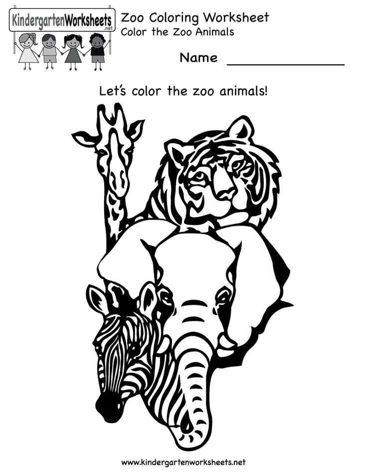 18 best zoo animals images on pinterest zoo animals animal coloring pages and coloring book. Black Bedroom Furniture Sets. Home Design Ideas