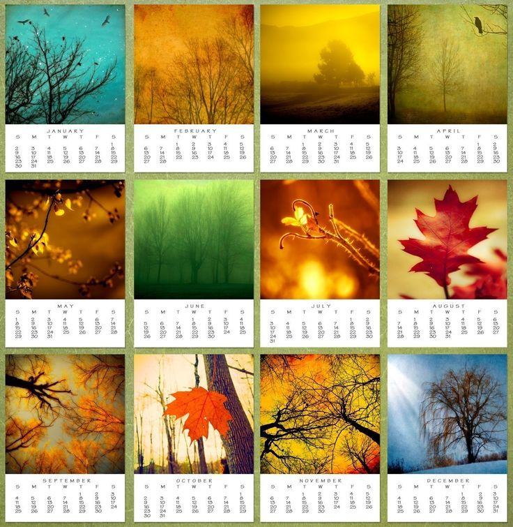 Calendar Ideas Photo : Images about photo calendars on pinterest in