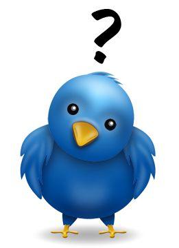chi e come seguire su Twitter: consigli alle piccole e medie aziende