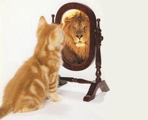 """Estime de Soi : En quoi la Sophrologie peux nous aider à la retrouver? """"L'estime de soi est une donnée fondamentale de la personnalité, placée au carrefour de trois composantes essentielles du Soi: Comportementale, cognitive et émotionnelle. Elle comporte des aspects comportementaux (elle influence nos capacités à l'action et se nourrit en retour de nos succès) et cognitifs (elle dépend étroitement du regard que nous portons sur nous, mais elle le..."""" Auteur: valérie VIREY"""
