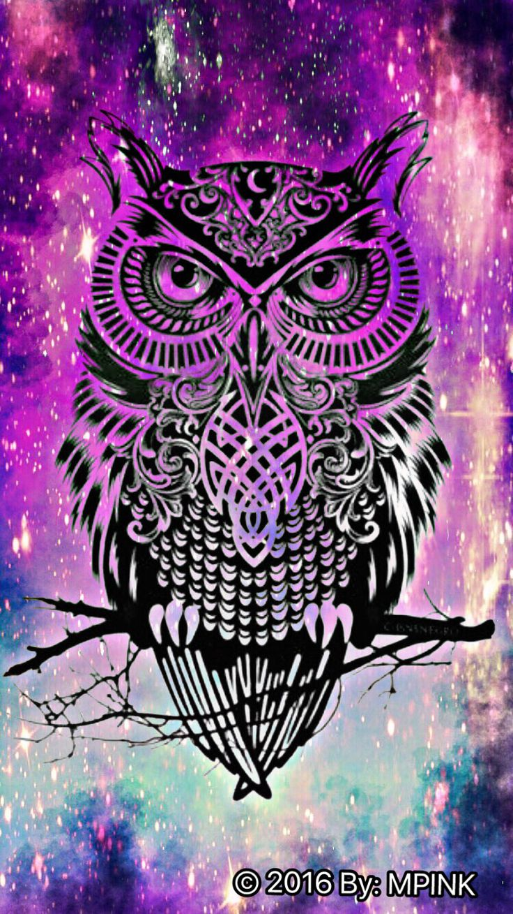 Cute Owl Wallpaper Iphone Night Owl Hipster Wallpaper Wallpaper In 2019 Owl