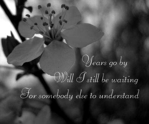 """""""Years go by will I still be waiting for somebody else to understand."""" ––Tori Amos, Silent All These Years"""