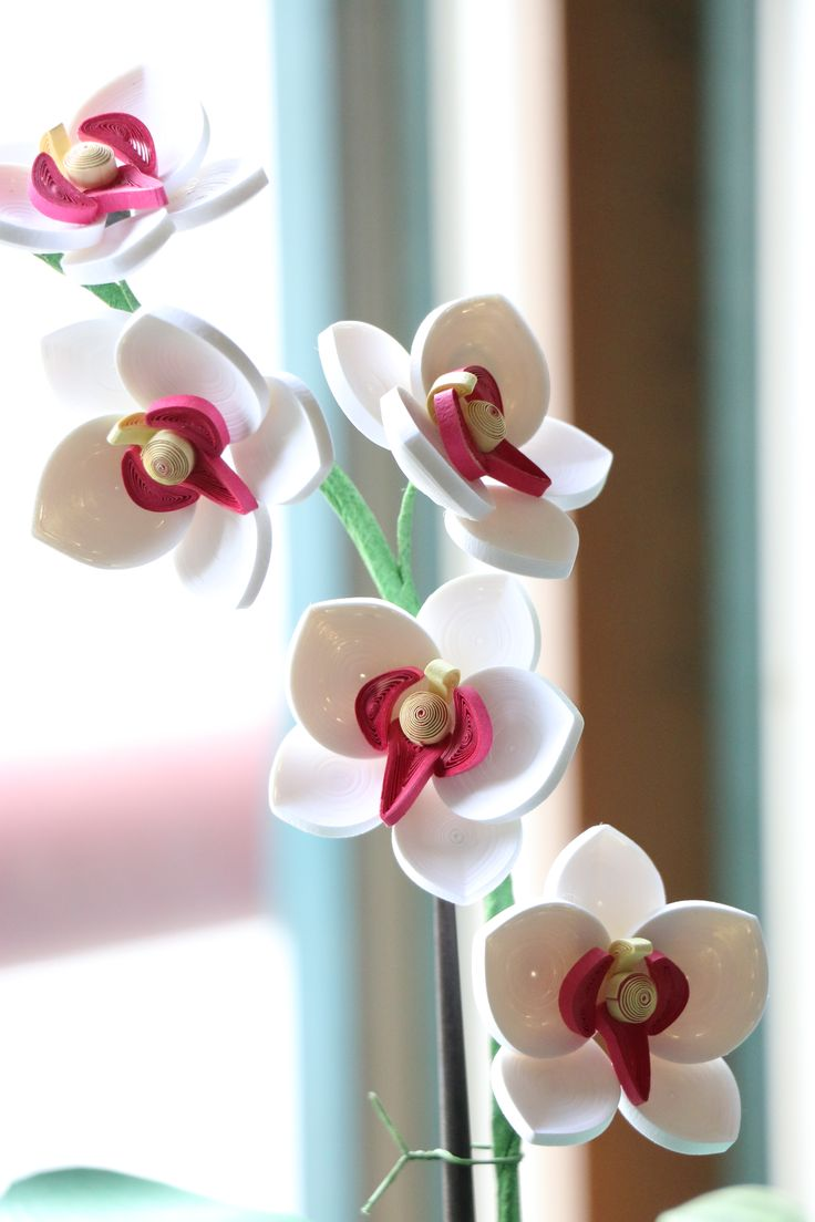 paper quilling - orchid  http://blog.naver.com/101kaikei/220405088030