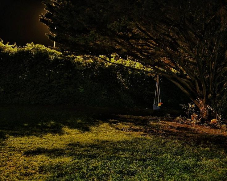 Dicen que el tiempo pone a todos en su lugar y que quien siembra vientos recoge tempestades. Pues bien yo prefiero recordar que el que la hace la paga. Y que por la noche todos los gatos son pardos. Y el que quiera entender que entienda.  #tropoPoeta #photography #photo #nightphotography #nightphotographer #night #swing #tree #poetry #atHome #conmiradademadre #conmiradadepadre #hellocreatividad #locosdelclic #vsco #vscogood #vscogrid #vscohub #vscocam #vscolovers #vscofashion #sony #sonyA7…
