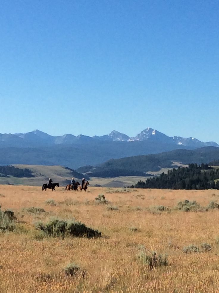 Enjoying that incredible feeling when there's no place in the world you'd rather be. Riders on Top of the World Peak at The Ranch at Rock Creek in Southwest Montana. If horseback riding is on your travel bucket list, this is one place you need to discover.