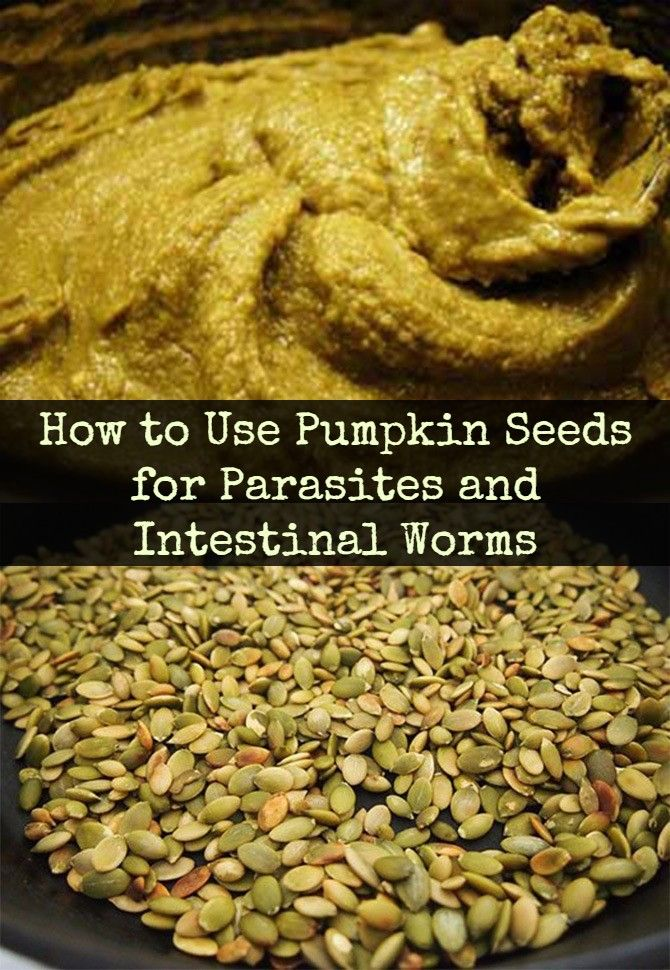 Parasites like human intestinal worms are a far more common problem than most people realize. But what are some of the symptoms of tapeworm and other worms and how can you use pumpkin seeds for parasites as an intestinal worm treatment?  Ahead is a natural remedy for tapeworms and other worms, based on a traditional German parasite treatment using raw pumpkin seeds.  First though, a look at the parasite problem and some of the most common symptoms of parasitic intestinal worms.