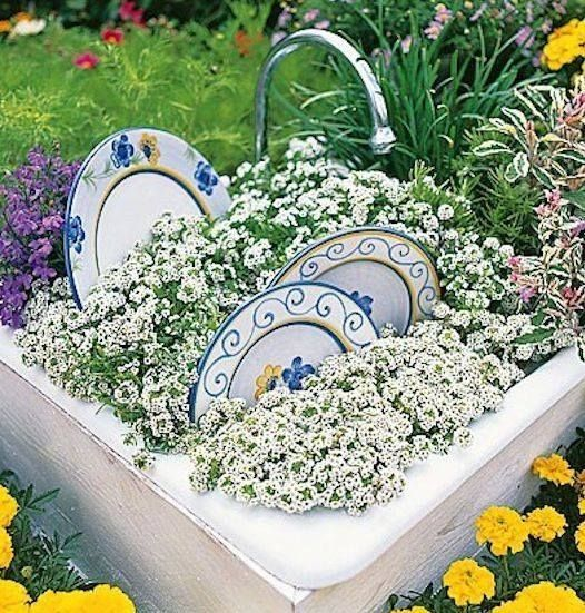 dishes topiary