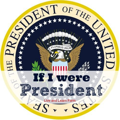 """If I were President 