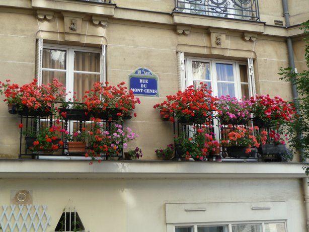 Fen tres fleuries avec des jardini res de g raniums dans for Fenetre paris