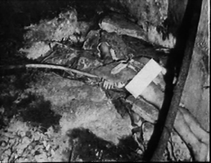 102 best arthur shawcross genesee river killer images on