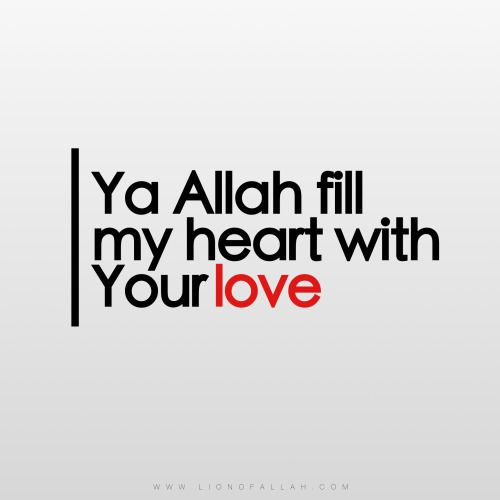 Ya Allah take away the worldly concerns from my heart and fill it up with your love Ya Rabb www.lionofallah.com
