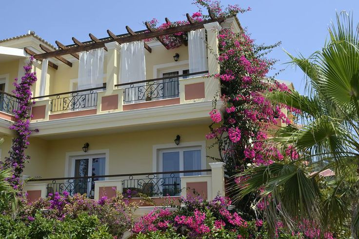 Lovely bougainvillea #romantic