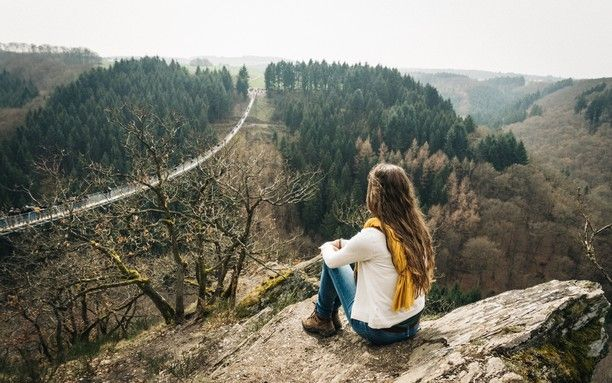A view over the Geierlay. Germany longest suspension bridge. (360m long)