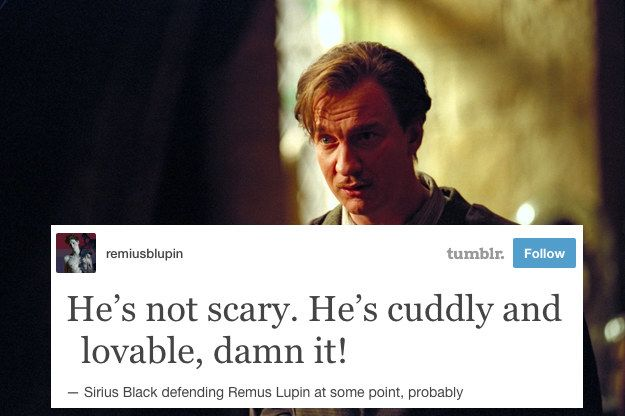 """22 Tumblr Posts About The Best Goddamn Couple In """"Harry Potter"""""""