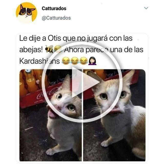 Instagram Venezuela Spanish Mexico Folge Memes Colom Meme Mir Auffolge Mir Auf Instagram S Bedroom Closet Design Diy Sliding Barn Door Closet Designs