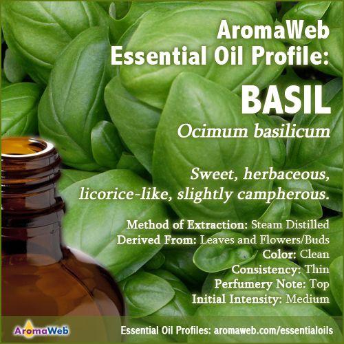 Basill Essential Oil Profile