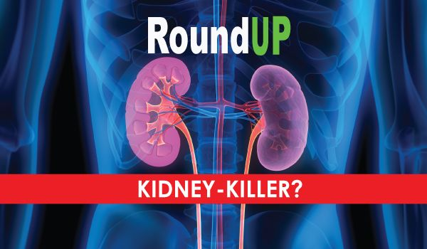 A new observational study confirms the hypothesis that Roundup herbicide (glyphosate) is behind the mysterious global epidemic of chronic kidney disease that has taken thousands of lives. By Contributing Writer Sayer Ji