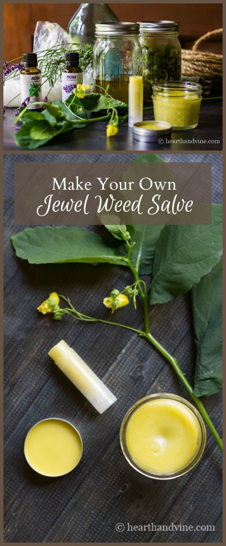 Jewelweed sap is said to aid irritated skin from poison ivy and bug bites. Learn how easy it is to make a salve with this helpful plant.