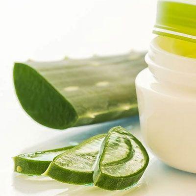 Aloe-Propolis-Creme selber machen -  sie hilft, Haut stark angegriffen, besonders beansprucht, gereizt oder entzündet ist. www.ihr-wellness-magazin.de