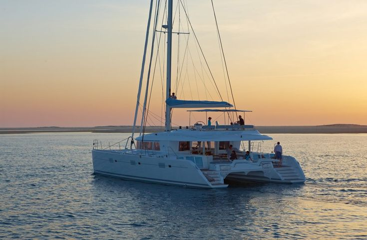 Image result for sailing catamaran yacht