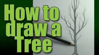 how to draw a tree without leaves - YouTube