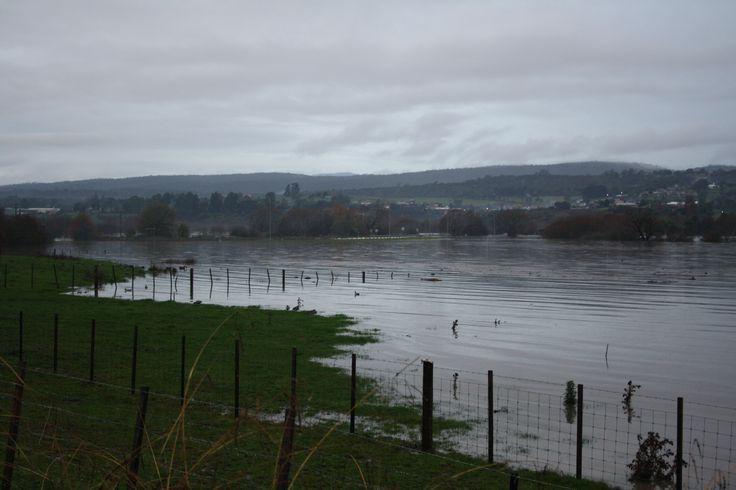 2016 Launceston floods. Suburb of St Leonards