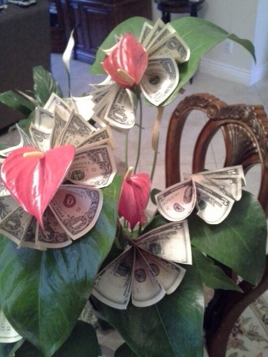 16 best money tree images on pinterest money trees christmas money tree for teacher gift negle Image collections