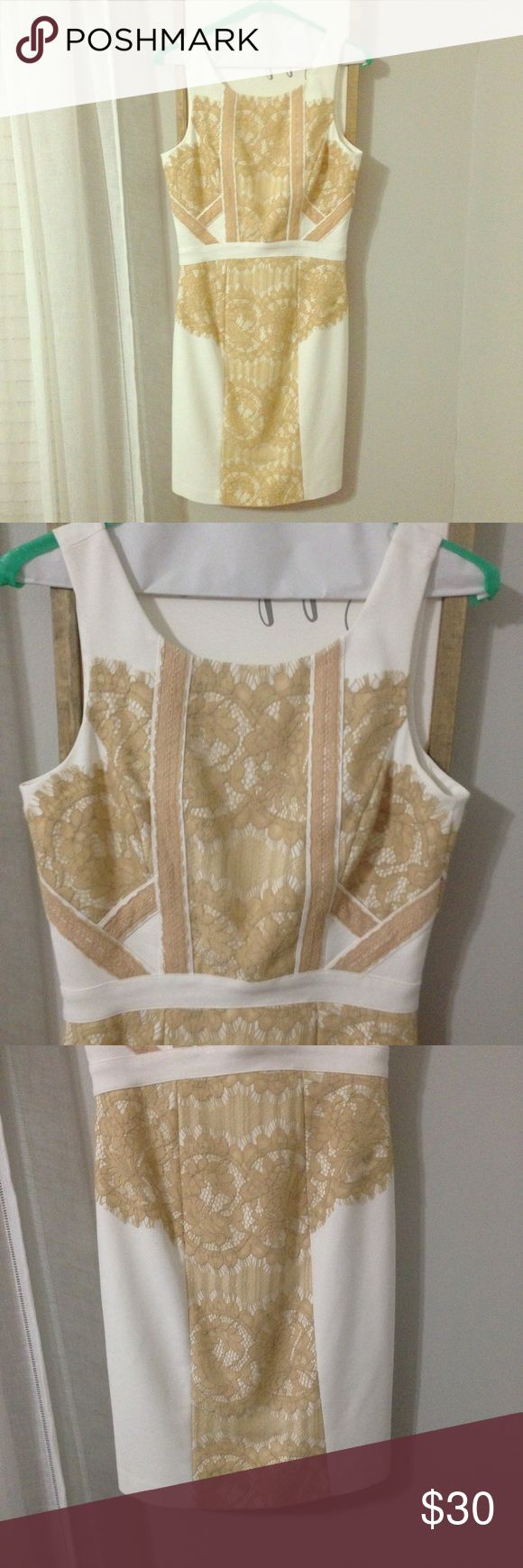 Gianni bini fitted white and tan lace dress size 2 Fitted white dress with tan lace detailing. Gianni Bini. Only worn once for my bridal shower. Has been dry cleaned. Size 2 Gianni Bini Dresses
