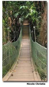 Adventures on Dunk Island - I've've walked accross this bridge. Dunk Island such a great place to visit :))