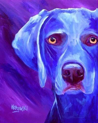 bleu dog