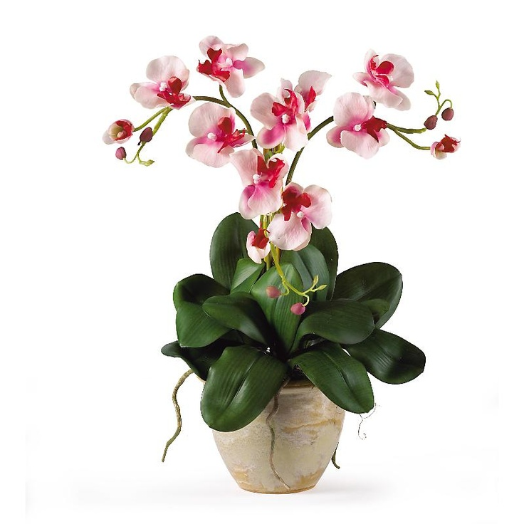 105 best Table Top Silk Plants images on Pinterest  Silk