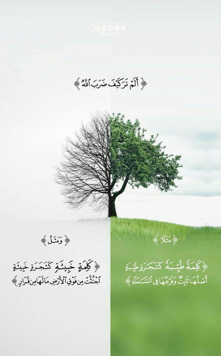 انتبه ... | Quran, Quran quotes love, Beautiful quran quotes