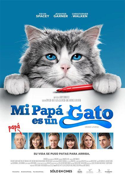 Mi papá es un gato (2016) online o descargar gratis HD
