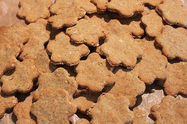 Green Food: Biscoitos veganos para cão